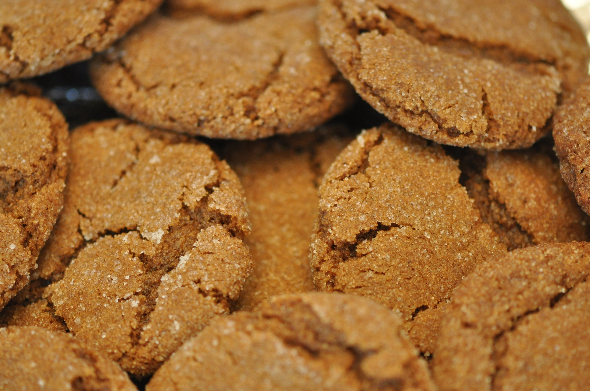 Gingersnap Day Days Of The Year
