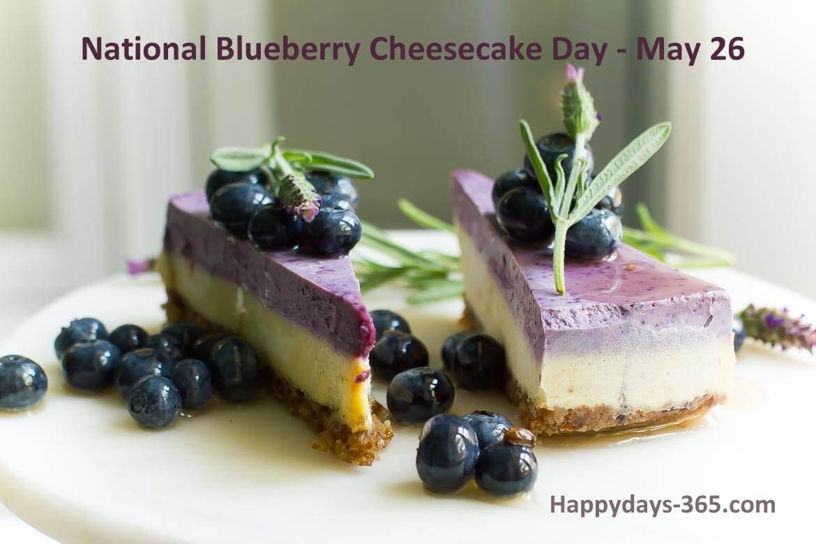 National Blueberry Cheesecake Day May 26 2018 Happy Days 365
