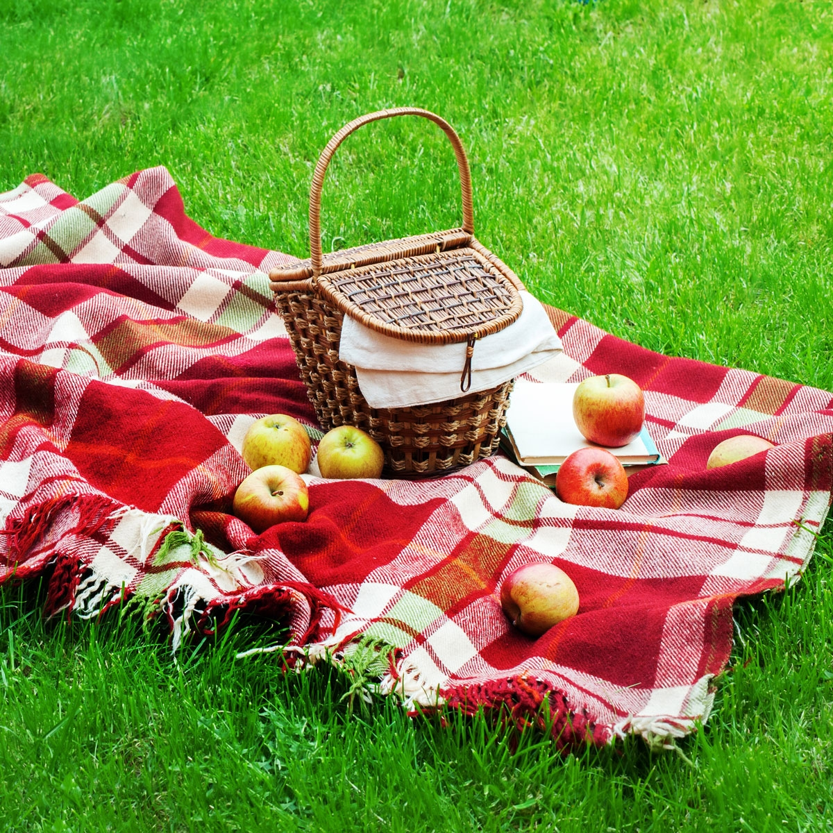 National Picnic Day April 23 2019 National Today