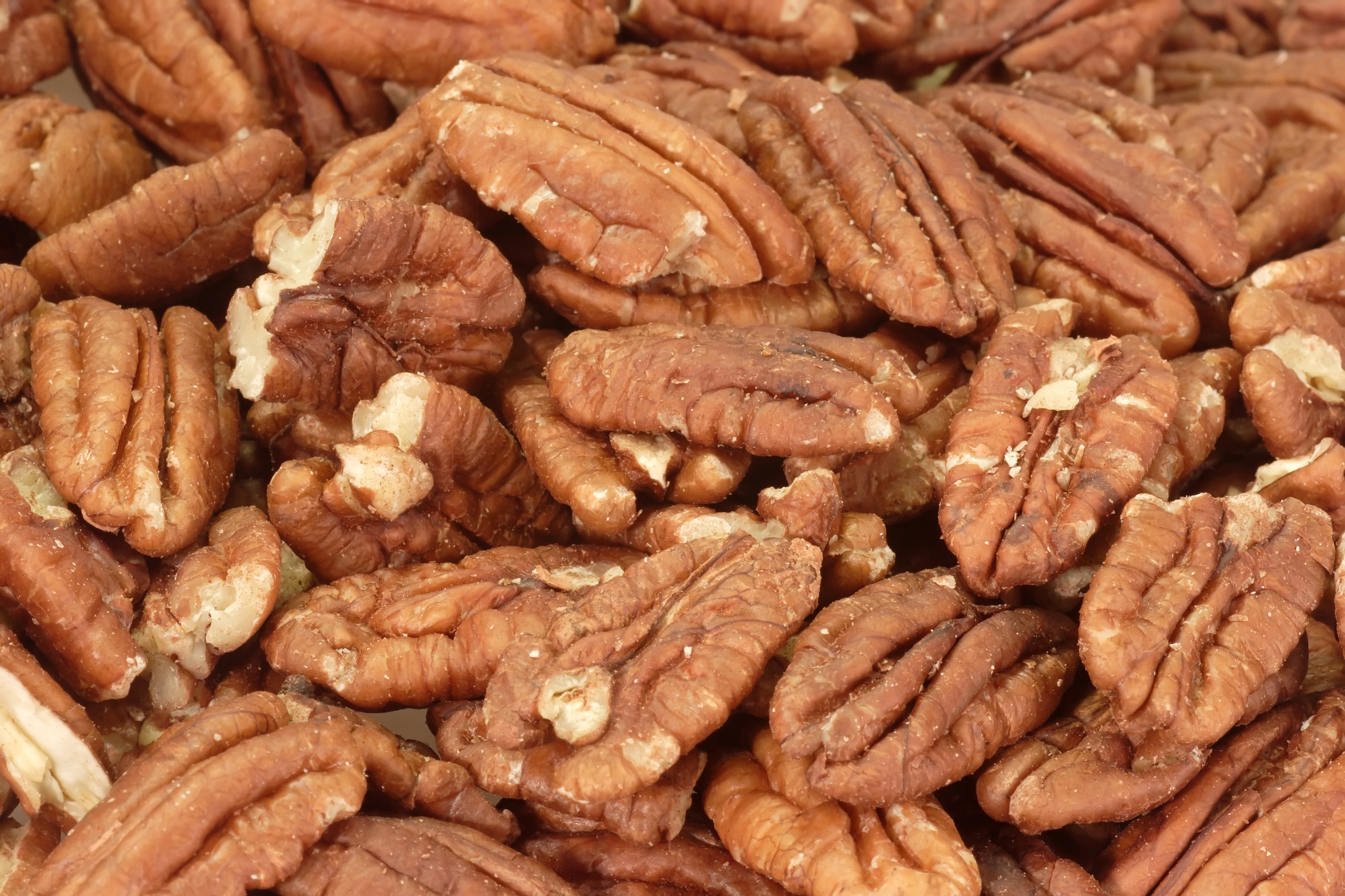 Pecan Day Days Of The Year
