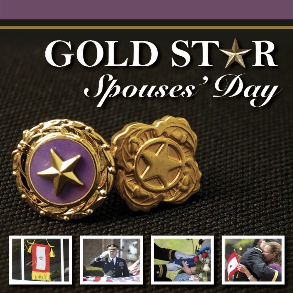 Silver Star Service Banner Day Lcpl Janos V Lutz Live To Tell