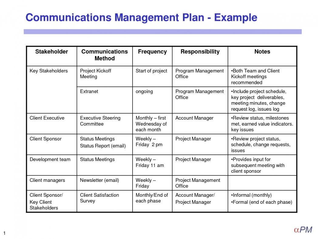 Simple Project Management Plan Template Pdf Crisis Examples Smorad