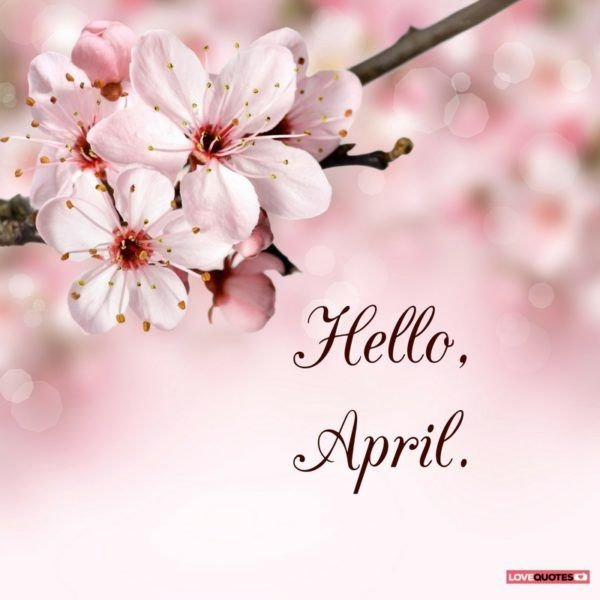 Hello April Signs April Images Seasons Months Months In A Year