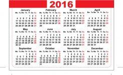 2016 Pocket Calendar Template Grid Horizontal Vector Image