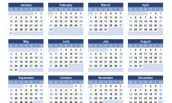 2021 Year Calendar Printable
