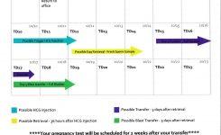 An Element Of Blank October 2010 Ivf Calendar