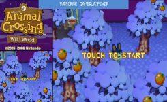 Animal Crossing Wild World Event Calendar Shoot Design