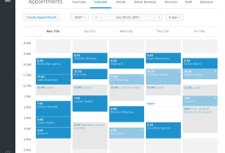 Interactive Appointment Calendar For Website