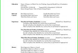 Basic Resume Template Microsoft