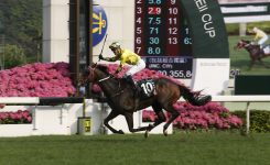 Ceo Blog Management Structure About Hkjc The Hong Kong Jockey Club