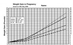 Charting Diabetes Pregnancy Canada