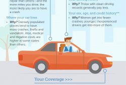 Costco Car Insurance Phone Number