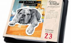 Daily Thoughts From A Dog Desk Calendar 2018 Calendar Club Uk