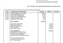 Lawyer Invoice Template