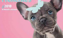 Fabulous Frenchies Myrna Calendar 2018 Calendar Club Uk