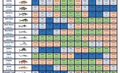 Fish Calendar S R Sportfishing Cabo San Lucas