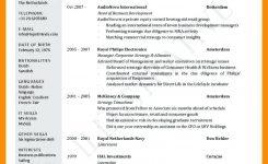 Format Of International Cv Kleobergdorfbibco