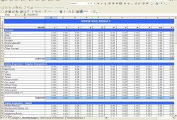 Daily Income And Expense Template