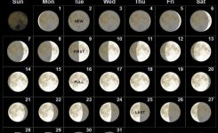 Free July 2019 Moon Phases Calendar Template Calendar For July