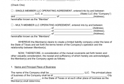 Texas Limited Liability Company Operating