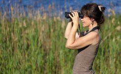 Go Birding Day Days Of The Year