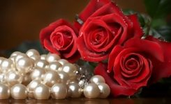 Happy Rose Day 2019 Wishes With Images