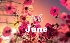 Hello June June Hello June Flowers Sunset June You Welcome