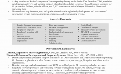 Information Technology Contract Template Unique Information