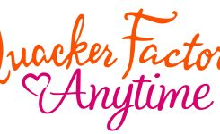 Introducing Quacker Factory Anytime New Inovations From Quacker