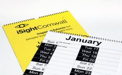 Large Print Easy To See Wall Calendar For The Visually Impaired