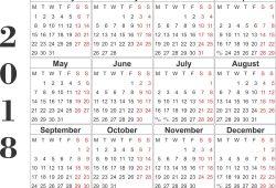 Large Year Calendar