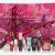 Makeup Advent Calendar Usa