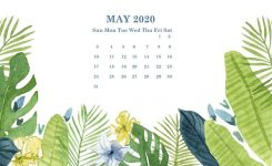 May 2020 Desktop Wallpaper Calendar In 2019 | Calendar