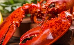 National Lobster Day September 25 2019 National Today