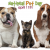 National Pet Parents Day 2019