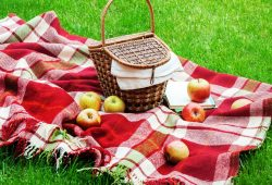 National Picnic Day 2019