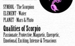 November Birth Sign Scorpio November Zodiac Sign Birthstone