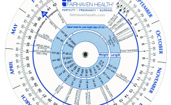 Ovulation Calendar And Pregnancy Wheel Ovulation Predictor