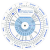 Pregnancy Wheel And Ovulation Calendar Online