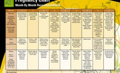 Pregnancy Chart Monthly Chart To Be Followed A Pregnant Mother