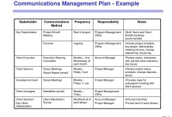 Sample Management Plan Template