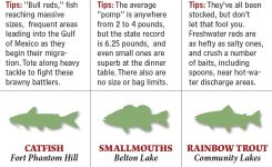 Texas 2016 Fishing Calendar Game Fish