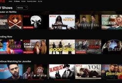 Upcoming Netflix Shows 2020