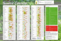 Vegetable Gardeners Calendar Uk