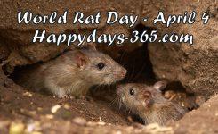 World Rat Day April 4 2019 Happy Days 365