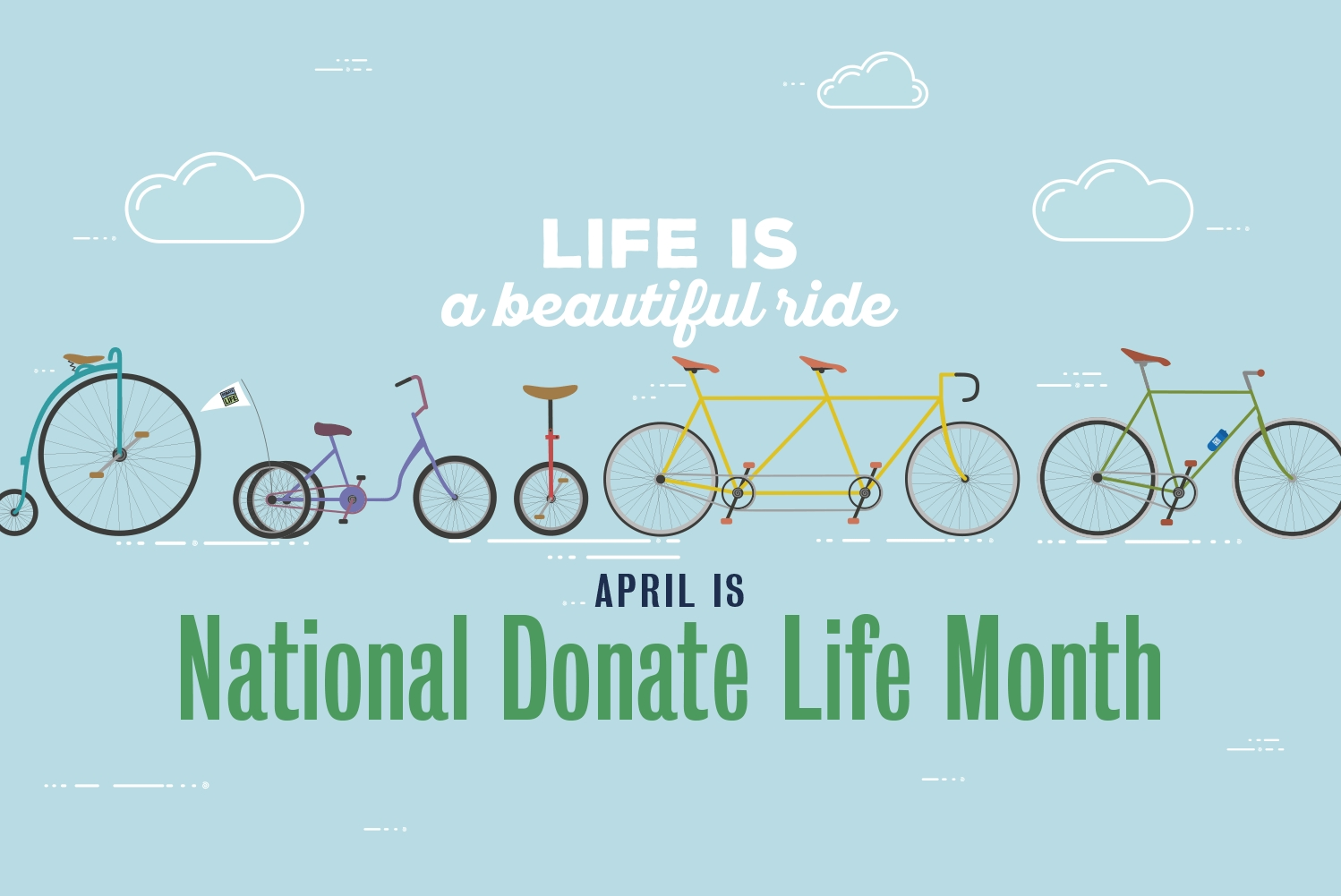 National Organ Donor Day 2019