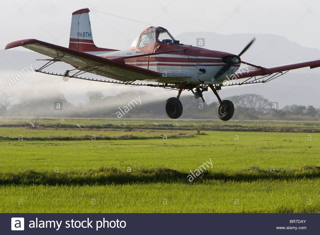 Cropduster Stock Photos Cropduster Stock Images Alamy