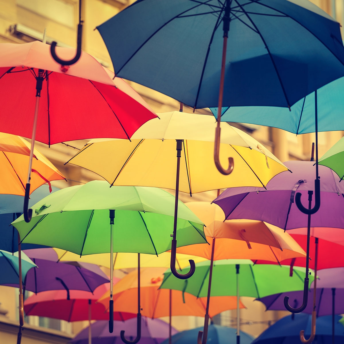 National Umbrella Day February 10 2019 National Today