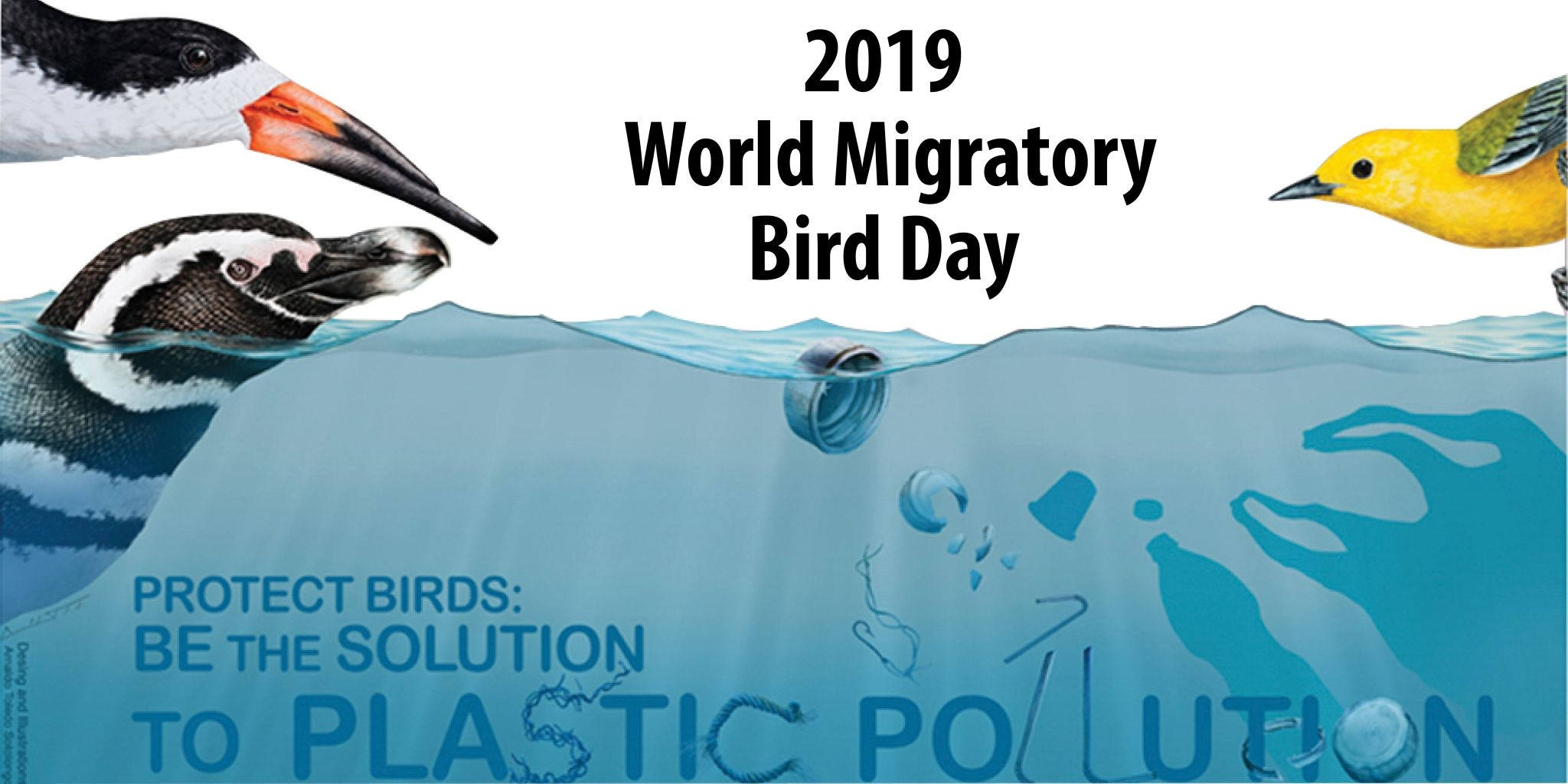 Bird Day 2019