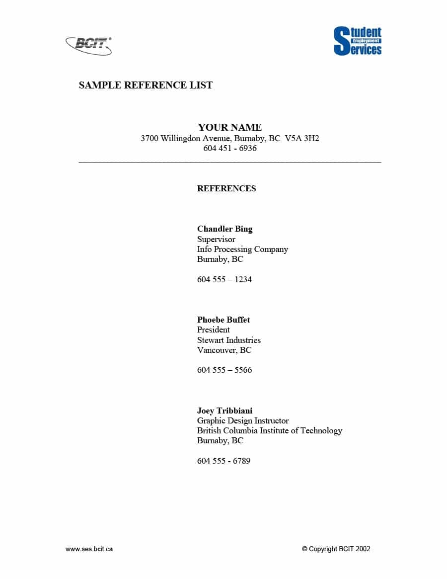 Professional Reference Template Document